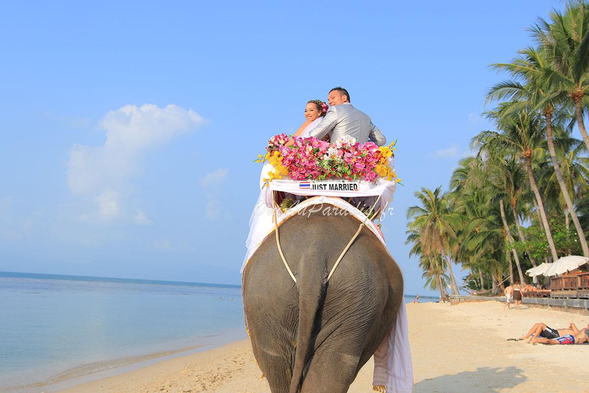 Organisation-Mariage-marier-maries-mariee-ceremonie-Thailande-Plage-ile-Koh-Samui-Island-thai-evenementiel-evenements-demande-fiancailles-EVJF-EVG-noces-voyages-Wedding-ceremony-Planner-Thailand-Beach-Events-event-request-bachelor-bachelorette-groom-bride-bridal-Elephant-entree-shooting-photos-arrivee-32